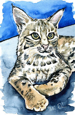 Watercolor Pet Portraits Photograph - Bobcat Portrait by Dora Hathazi Mendes
