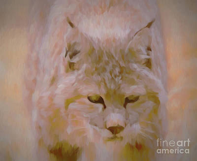 Digital Art - Bobcat by Steven Parker