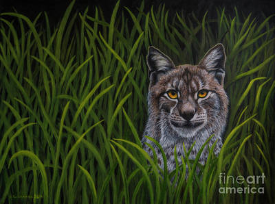 Nature Oil Painting - Bobcat by Veikko Suikkanen