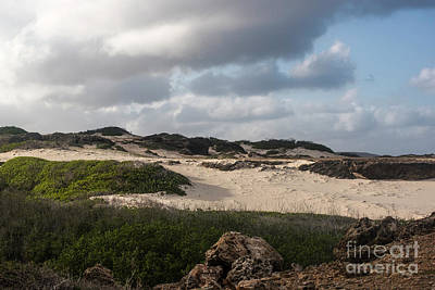 Photograph - Boca Prins Dunes by Judy Wolinsky
