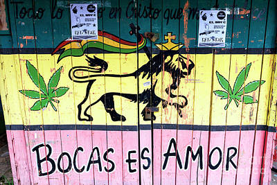 Photograph - Bocas Es Amor In Bocas Del Toro by John Rizzuto