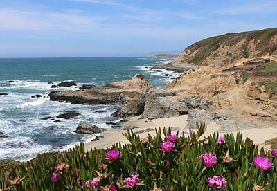 Photograph - View From Bodega Head In Bodega Bay Ca  by Christy Pooschke