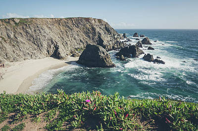 Photograph - Bodega Head by Margaret Pitcher