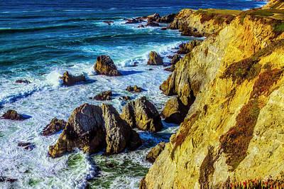 Photograph - Bodega Head Sonoma California by Garry Gay