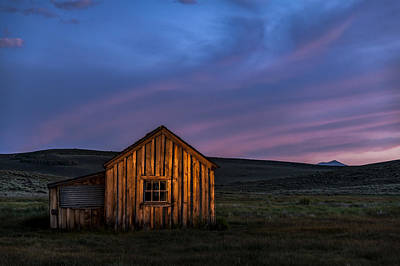 Photograph - Bodie At Sunset by Cat Connor