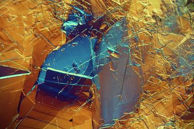 Photograph - Body Builder - Amino Acid Leucine by Sondra Barrett