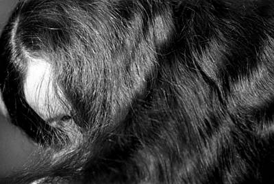 Vermeer Rights Managed Images - Body of Hair Royalty-Free Image by Lonnie Paulson