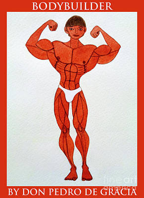 Painting - Bodybuilder by Don Pedro De Gracia