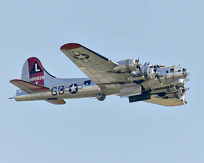 Photograph - Boeing B-17g Flying Fortress by Alan Toepfer