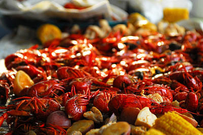 Boiled Crawfish Southern Style Art Print by Wayne Archer
