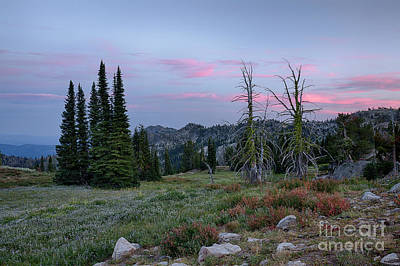 Photograph - Boise National Forest Twilight by Idaho Scenic Images Linda Lantzy