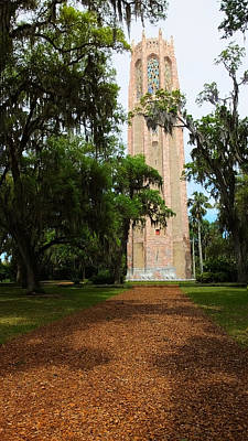 Photograph - Bok Tower Full Back View by Judy Wanamaker
