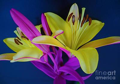 Art Print featuring the photograph Bold Beautiful Flowers by Ray Shrewsberry