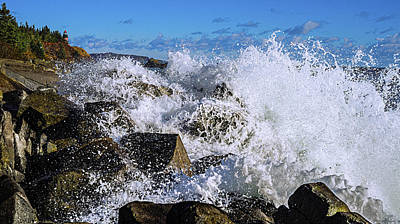 Bold Coast Of Down East Maine Art Print by Marty Saccone