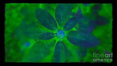 Digital Art - Bold Color Statement by Rachel Hannah