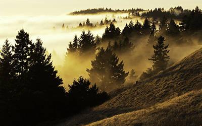 Stinson Beach California Photograph - Bolinas Ridge by Lance Kuehne