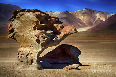 Photograph - Unusual Rock Formation Bolivia  by Bob Christopher