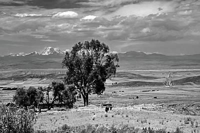 Photograph - Bolivian Landscape No. 8-1 by Sandy Taylor