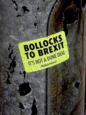 Photograph - Bollocks To Brexit by Dorothy Berry-Lound
