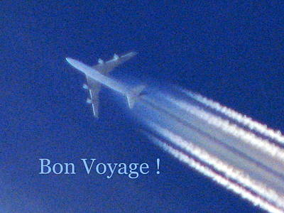 Photograph - Bon Voyage by T Guy Spencer