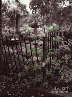 Savannah Infrared Photograph - Bonaventure Cemetary by Julie Hart