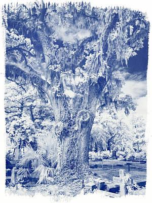 Savannah Infrared Photograph - Bonaventure Cemetery Ir 1075 by Bob Neiman