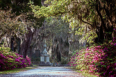 Photograph - Bonaventure Cemetery Iv by Joan Carroll