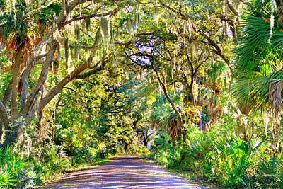 Photograph - Bonaventure Cemetery Pathway 2 by Lisa Wooten