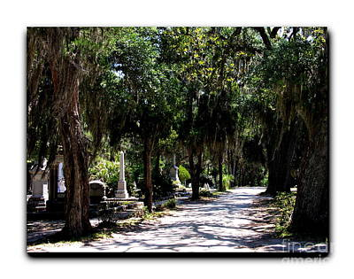 Photograph - Bonaventure Cemetery Walk by Jacqueline M Lewis