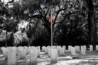 Photograph - Bonaventure World War 2 Cemetery by Lisa Wooten