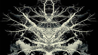 Photograph - Bone Tree Of Casting by John Williams