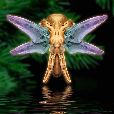 Photograph - Bonefly 2 by WB Johnston