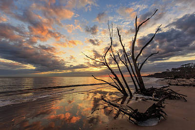 Photograph - Boneyard Beach Daybreak by Stefan Mazzola