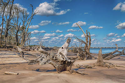 Photograph - Boneyard Beach by John M Bailey