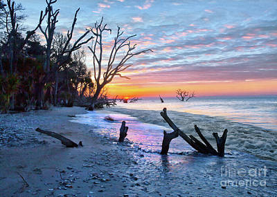 Photograph - Boneyard Beach  by Sharon Foster