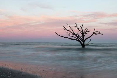 Edisto Island Photograph - Boneyard Bye by Nicole Robinson