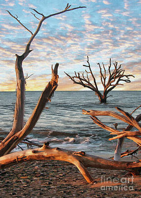 Photograph - Boneyard Trees by Sharon Foster