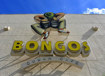 Bongo Photograph - Bongos Disney Springs Florida by David Lee Thompson