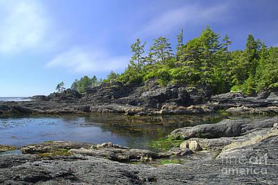 Juan De Fuca Provincial Park Photograph - Bonita Botanical Beach by Brian Kamprath