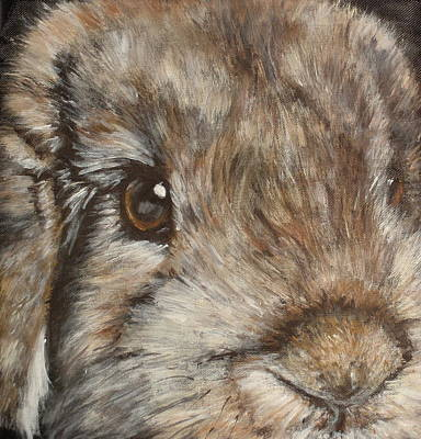 Painting - Bonita by Carol Russell