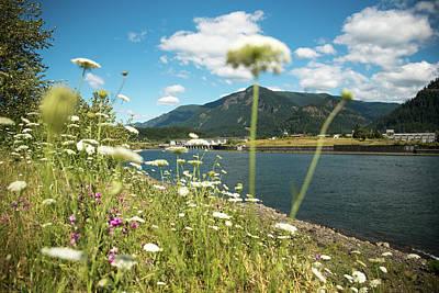 Photograph - Bonneville In Bloom by Tom Cochran