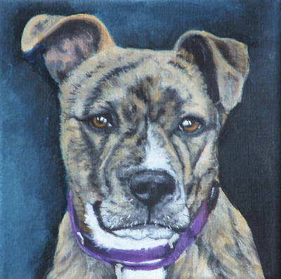 Painting - Bonnie by Carol Russell