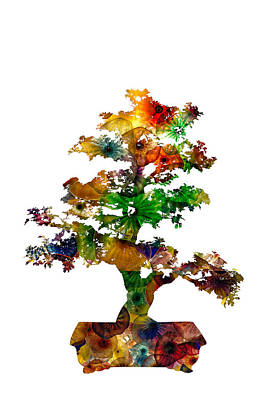 Photograph - Bonsai by Michael Colgate