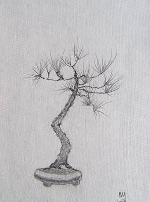 Japanese Tree Drawing - Bonsai by Nick Young