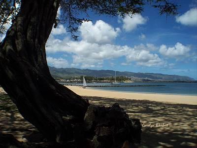 Wall Art - Photograph - Landscape Bonsai Pipeline Hawaii by Carolyn Hebert