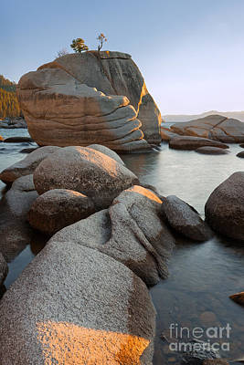 Photograph - Lake Tahoe - Bonsai Rock by Francesco Emanuele Carucci