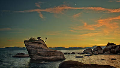Photograph - Bonsai Rock by Josephine Buschman