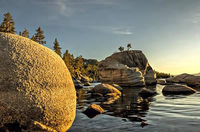Photograph - Bonsai Rock by Maria Coulson