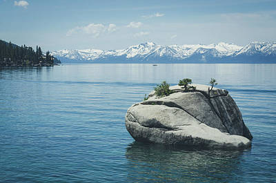 Photograph - Bonsai Rock No.2 by Margaret Pitcher