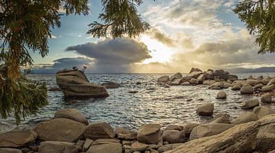 Photograph - Bonsai Rock Through The Trees By Brad Scott by Brad Scott